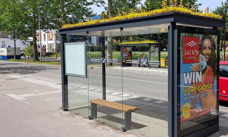 Thành phố Hà Lan trồng hoa ở trạm xe buýt thu hút ong -