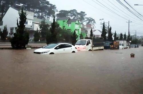 Nhiều ôtô bị ngập nặng ở nội ô TP Đà Lạt sáng 8/8. Ảnh:Hoàng Trường