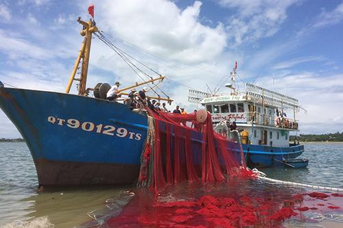 Ngư dân vỡ nợ vì tàu vỏ thép - ảnh 1