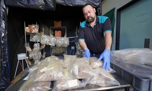 Australia bắt số ma túy có thể bào chế 12 triệu viên thuốc lắc - ảnh 1