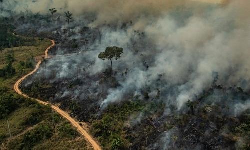 Một mảnh rừng Amazon bị cháy trong tháng này. Ảnh: AFP.