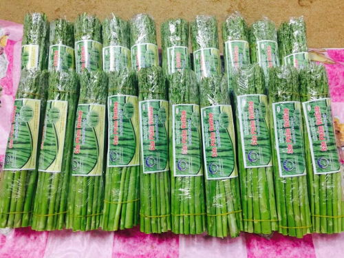 Sản phẩm măng tây đạt tiêu chuẩn VietGAP tại Bắc Ninh. Ảnh: Trung tâm Khuyến nông Quốc gia.