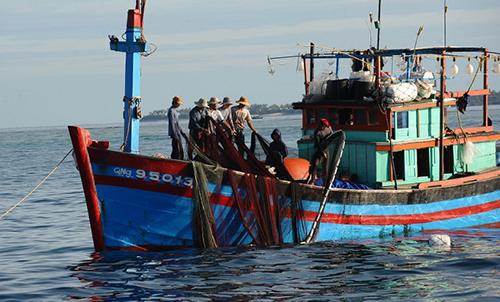 Brunei bắt hai tàu cá Việt Nam - ảnh 1