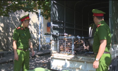 Cảnh sát giải cứu con hổ 240 kg suýt bị nấu cao - ảnh 1