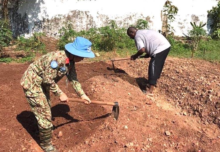 Trung tá Nguyễn Thị Liên giúp dân trồng trọt vào cuối tuần, sau những ngày thường làm việc trong căn cứ phái bộ Gìn giữ hoà bình Liên Hợp Quốc ở Trung Phi. Ảnh: Nhân vật cung cấp