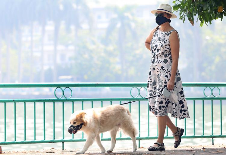 Một người nước ngoài đeo khẩu trang đi dạo ven hồ Tây chiều 30/9. Ảnh: Ngọc Thành.