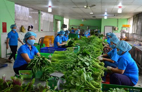 Ứng dụng công nghệ 4.0 vào sản xuất nông nghiệp - 1