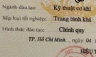 Phản đối bỏ xếp hạng bằng đại học - hé lộ tư duy học tại Việt Nam - ảnh 1