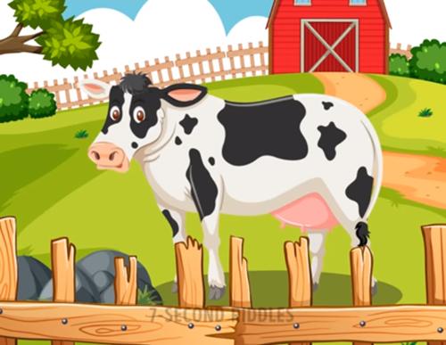 Năm câu đố thử thách hiểu biết về động vật - ảnh 1