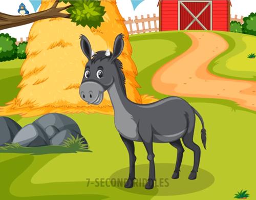 Năm câu đố thử thách hiểu biết về động vật - ảnh 5