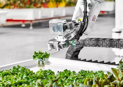 Công nghệ máy trồng cây tự động sẽ được giới thiệu tại triển lãm.