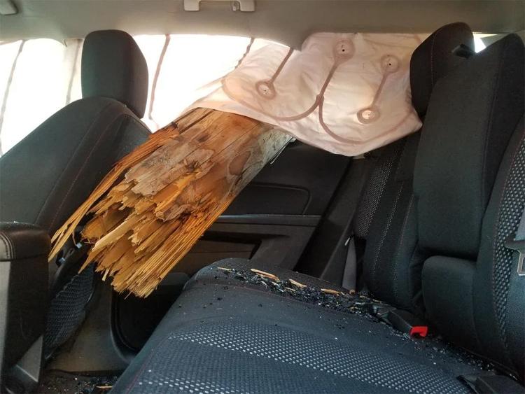 Phần gốc cột tua tủa gỗ chọc thằng về phía hàng ghế sau. Các túi khí rèm đã bung.