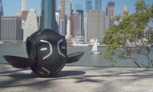 Quả bóng có thể chở người đi 19 km/h -