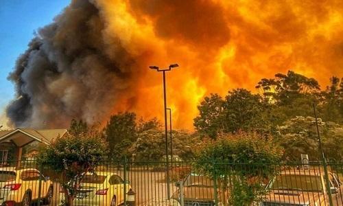 Cháy rừng ở Australia tạo ra mây lửa -