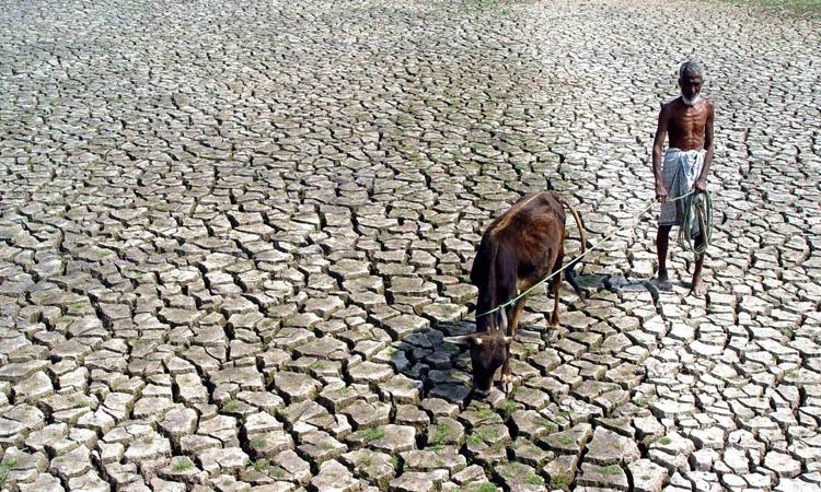 Người nông dân Ấn Độ đứng trên cánh đồng khô hạn, nứt nẻ ở bang Maharaashtra năm 2016. Ảnh: Reuters.