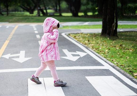 12 nguyên tắc an toàn giao thông trẻ cần biết - ảnh 1