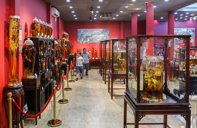 Bảo tàng sâm Ngọc Linh ở Sài Gòn