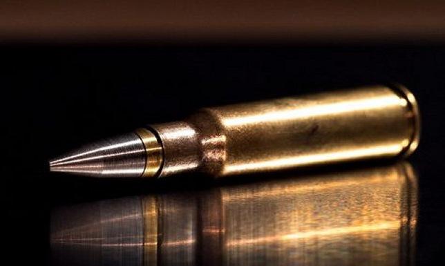 Phiên bản CAV-X cỡ nòng 7,62x51 mm do DSG phát triển. Ảnh: DSG Technologies.