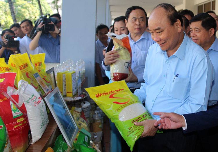 Thủ tướng: Giảm nửa triệu ha đất trồng lúa - ảnh 2