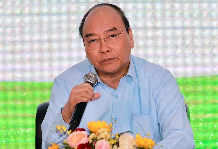 Thủ tướng: Giảm nửa triệu ha đất trồng lúa - ảnh 1