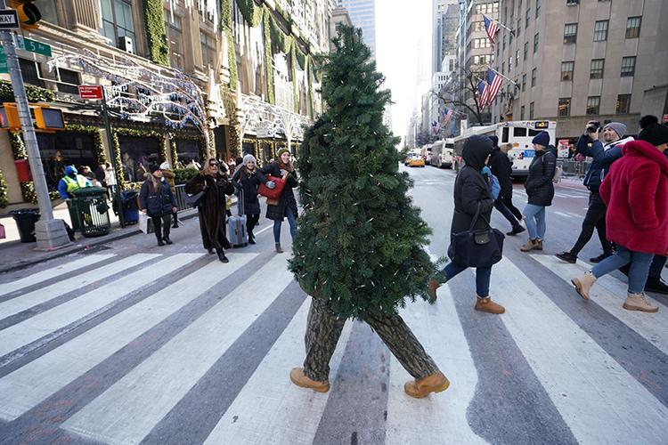 Liberto đi quanh trung tâm New York trong hình dạng cây thông Giáng sinh hôm 19/12. Ảnh: AFP