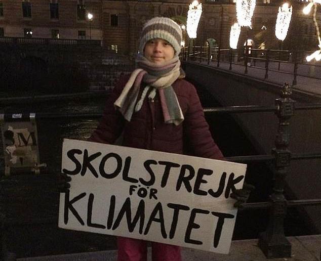 Thunberg biểu tình bên ngoài quốc hội Thuỵ Điển vào ngày sinh nhật 3/1. Ảnh: Greta Thunberg/Twitter