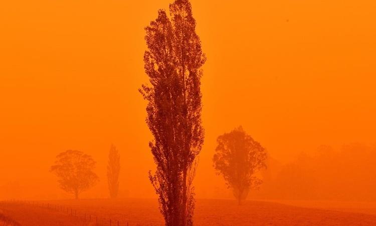 Bầu trời chuyển sang màu đỏ ở thị trấn Bemboka, bang New South Wales, Australia, ngày 5/1. Ảnh: AFP.