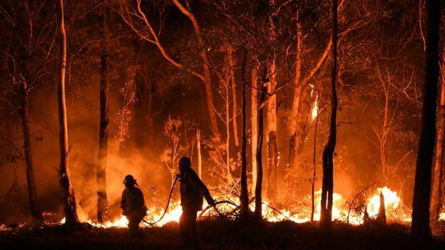 Chạy lửa cháy rừng nuốt chửng nhà - ảnh 2