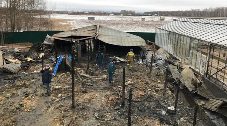 Giới chức Nga làm việc tại hiện trường vụ cháy trang trại nhà kính ở làng Nesterovo, quận Ramensky, ngoại ô thủ đô Moskva. Ảnh: AP