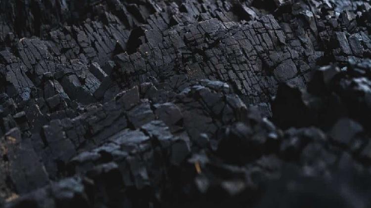 Than sinh học được sản xuất từ hỗn hợp vỏ mía và mùn cưa. Ảnh: Biogreen Energy