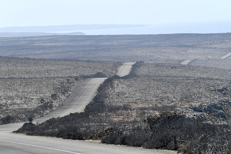 Công viên quốc gia Flinders Chase nằm trên đảo Kangaroo, phía tây nam Adelaide, Australia, bị thiêu rụi hoàn toàn hôm 7/1. Ảnh: Reuters