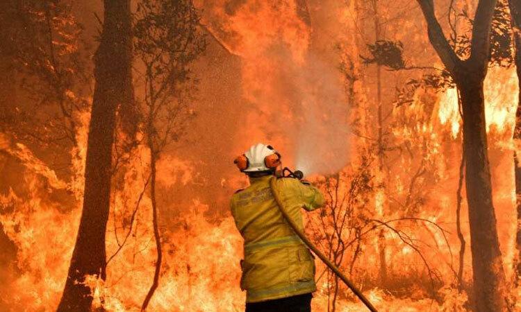 Lính cứu hỏa chữa cháy rừng ở thị trấn Nowra, New South Wales hôm 31/12/2019. Ảnh: