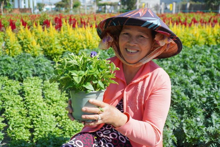 Bà Ngô Thị Ánh đang chăm sóc hoa trong vườn, vụ nàylãi khoảng 80 triệu đồng. Ảnh: Việt Quốc