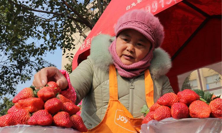 Một nông dân bán hoa quả ở Giang Tô. Ảnh: CRI.