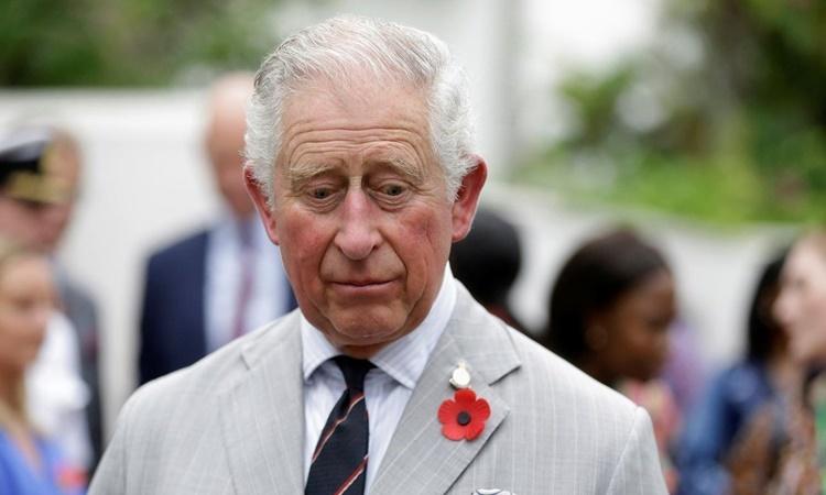 Thái tử Charles vẫn hỗ trợ tài chính cho Harry - Meghan - ảnh 1