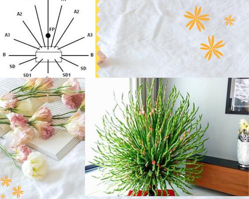 Khi cắm có thể tạo điểm nhấn sáng tạo tại khu vực trung tâm, hoặc tạo đường cong cho lãng hoa.