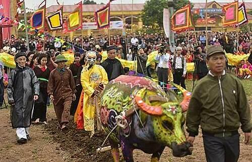 Nghi lễ tái hiện vua Lê Đại Hành xuống đồng cày ruộng. Ảnh: Bộ Nông Nghiệp và Phát triển Nông thôn