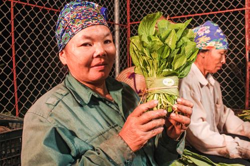 Một ngày ở nông trại rau hữu cơ hạnh phúc - 10