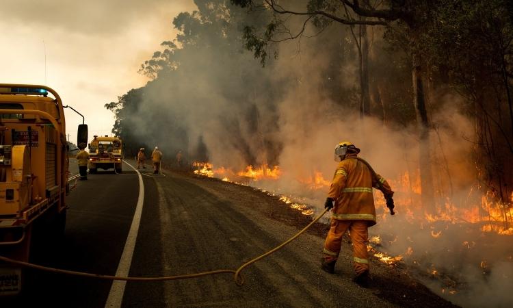 Sân bay đóng cửa vì cháy rừng - ảnh 1