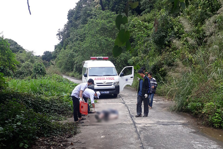 Du khách New Zeland tử vong ở rừng Sơn Trà - ảnh 1