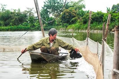Ông Ngọc quây lưới riêng khu nuôi vịt và thường xuyên vớt lông để mặt ao luôn sạch.