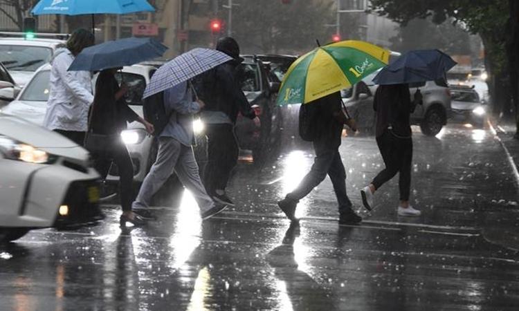 Australia đón mưa lớn - ảnh 1