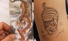 Hình xăm chúa sơn lâm hóa mèo