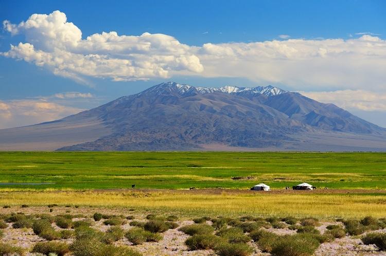 Khung cảnh phổ biến ở vùng đất của bầu trời xanh. Ảnh: Shutterstock