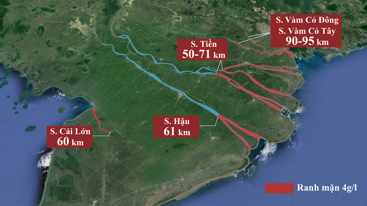 Nước biểnxâm nhậpvào các con sông lớn ở miền Tây50-90 km, sâuhơn năm2016 từ 2 đến11 km. Ảnh:Thanh Huyền.