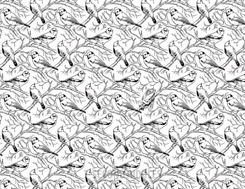 Sáu câu đố tìm hình khác biệt - 2