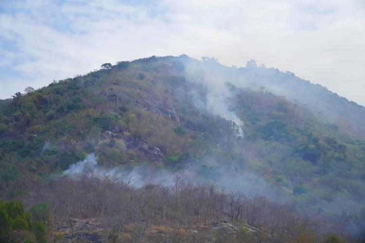 Khói cháy rừng tỏa mù trên núi Tà Cú - ảnh 1