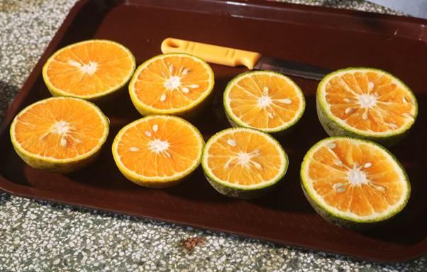 Cam hữu cơ vị dịu mát, chua thanh, nhà vườn định hướng cải tạo trái cam cho mỏng vỏ vào vụ sau bằng cách điều chỉnh lượng nước, thời gian thực hiện các công đoạn.