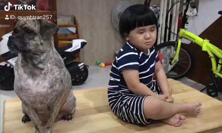 Cậu bé khóc khi bị cún cưng dỗi -
