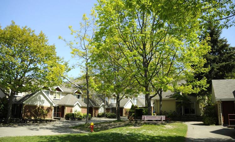 Khu Acadia Park dành riêng cho du học sinh ở cùng gia đình. Ảnh: UBC.